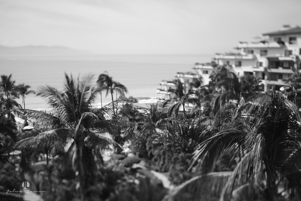 Professional Photographer - Wedding at Grand Velas Puerto Vallarta